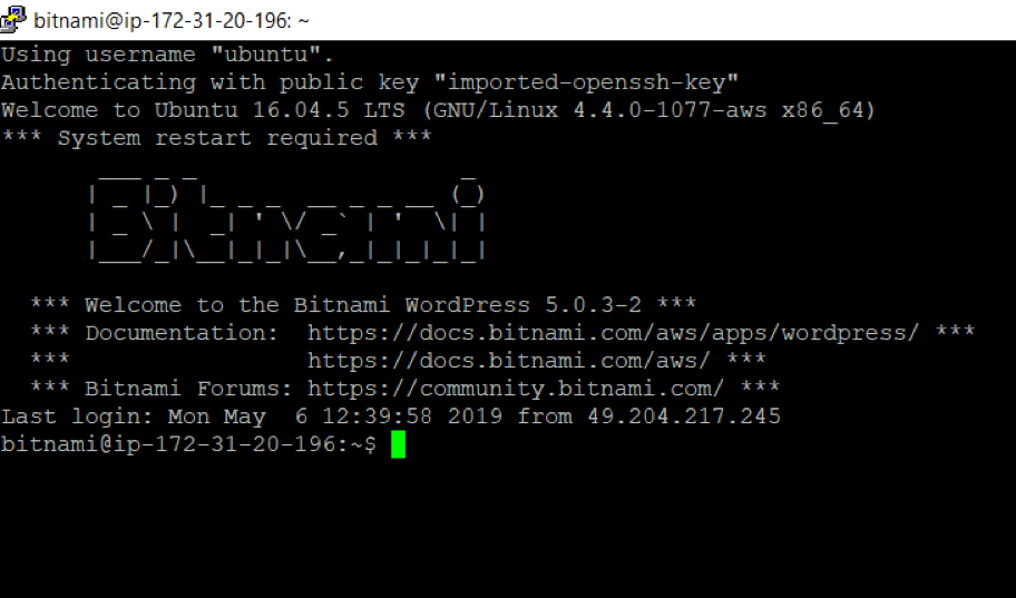 Accessing Bitnami through command prompt