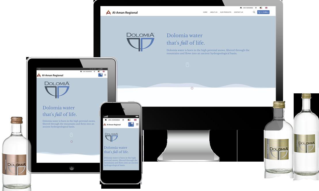 Multilingual ecommerce website Kuwait