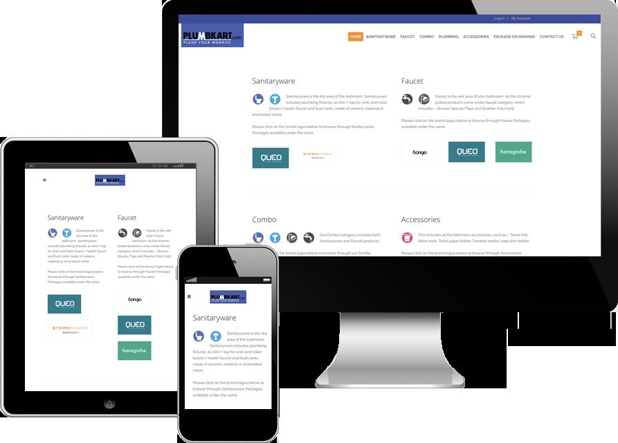 Ecommerce website developer consultant